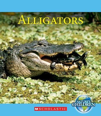 Alligators By Daly, Timothy M.